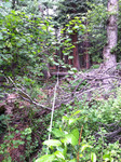 Fern Lake Trail (RMNP): Plot 45 by Mario Bretfeld, Michonne Duffy, Jenna Franklin, and Scott B. Franklin