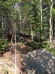 North Fork Trail: Plot 182 by Mario Bretfeld, Scott B. Franklin, and Daniel Beverly